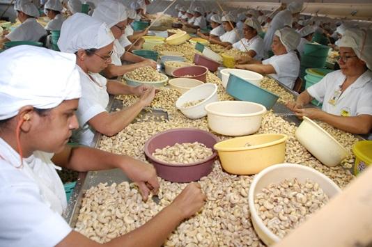 Ceará bate recorde histórico em exportações no acumulado de 2018