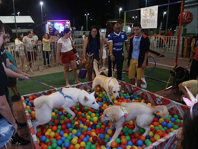 II Feira Pet de Fortaleza