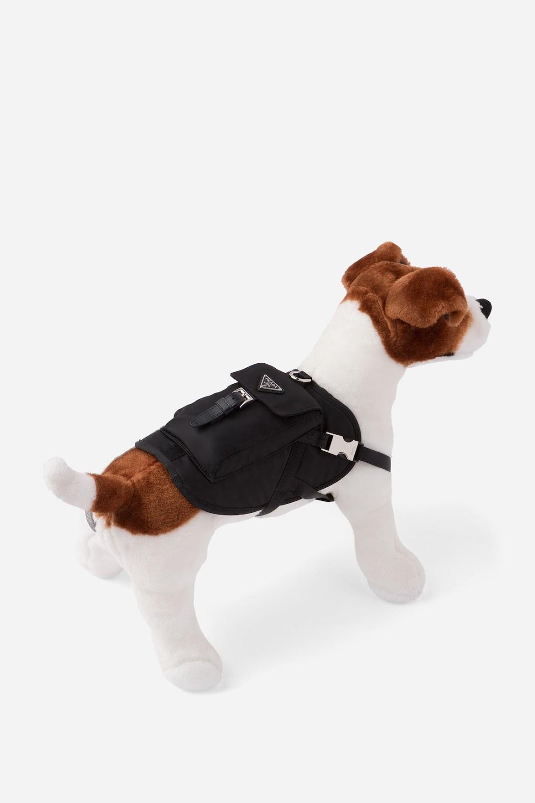 PETS! – Prada lança coleção de roupas para pets